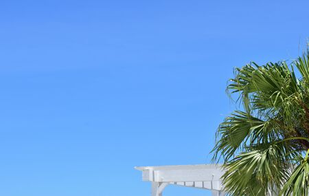 Palm trees, white roof and blue sky/ Okinawa 写真素材