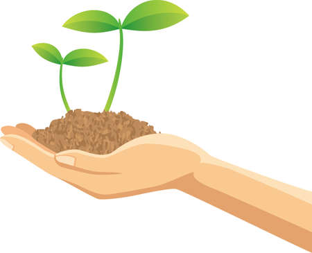 Image illustration of a hand with a soil with new shoots  イラスト・ベクター素材