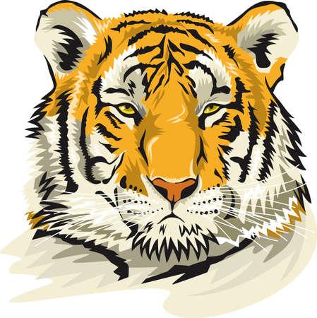 Realistic tiger face image illustration