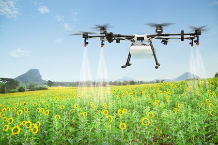Landbouw drone bespuitende watermeststof op het zonnebloemgebied