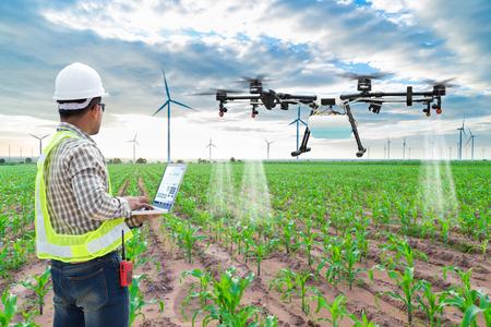 Technicien agriculteur utiliser wifi ordinateur contrôle agriculture drone voler à l'engrais pulvérisé sur les champs de maïs
