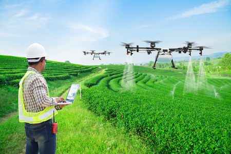 Technician farmer use wifi computer control agriculture drone fly to sprayed fertilizer on the green tea fields, Smart farm 4.0 concept Reklamní fotografie