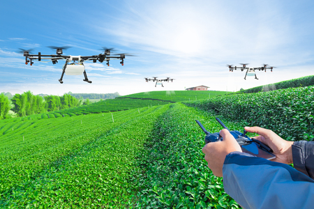 Hand control agriculture drone fly to sprayed fertilizer on the green tea fields, Smart farm 4.0 concept Archivio Fotografico