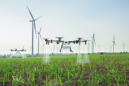 Agriculture drone fly to spray fertilizer on the sugarcane fields, Smart farm 4.0 concept Reklamní fotografie - 120583852