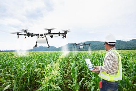 Granjero técnico utiliza drone de agricultura de control informático wifi en campo de maíz dulce