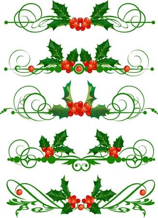 christmas berries: Agrifoglio