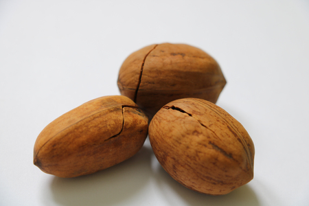 Several American nuts on a white background. Isolated Stock Photo
