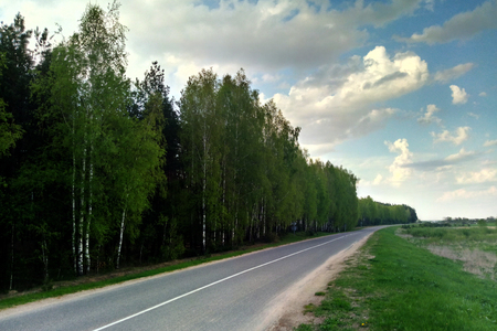A view of the sky and the road, in which a beautiful forest grows.