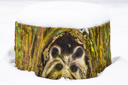 Close up texture of closeup of an old painted stump in the snow