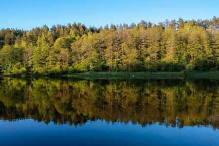Beautiful river with a forest, the reflection of trees in the water, smooth calm surface of the water without waves