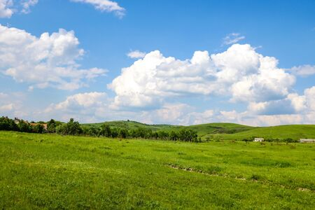 Green fields on the background of mountains and blue sky with white clouds Stockfoto