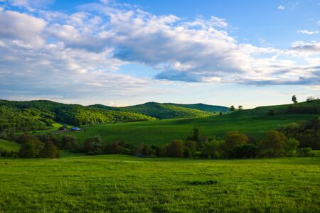 Scenic panoramic view of rolling countryside green farm fields with sheep, cow and green grass Foto de archivo