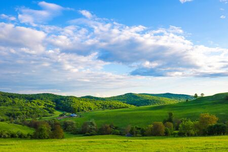 Scenic panoramic view of rolling countryside green farm fields.
