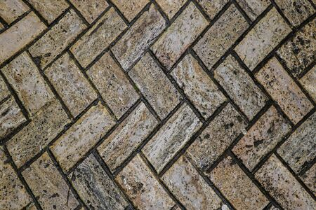Texture of the track or tile on the wall, background, blank for designers Stockfoto