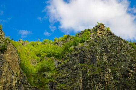 View of the peaks of the mountains, covered with greenery, against the blue sky