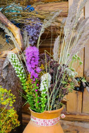 View of useful herbs and plants used in traditional medicine