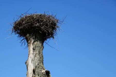 An empty stork nest against a blue sky awaiting the arrival of storks in spring