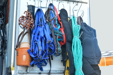 elite sport: Horse riding equipment.