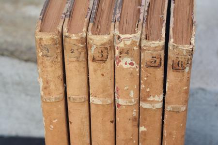 antiquarian: Vintage antiquarian old books