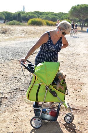 CAP DAGDE, FRANCE - JULY 24, 2016: Woman with a stroller for pets.Yorkshire terrier in a wheelchair at Cap dAgde, France. Editorial