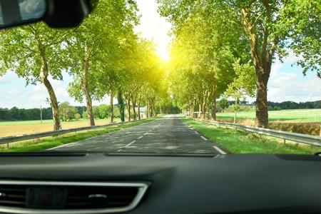 Vista de la carretera y el bosque a través del parabrisas del auto Sunshine