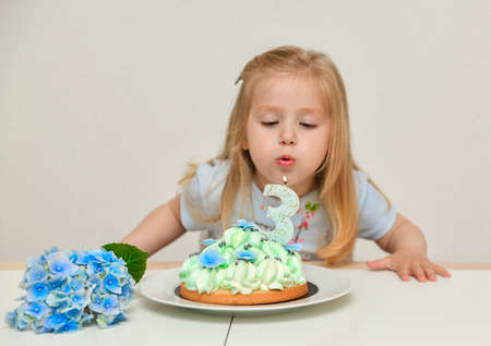 A girl of 3 years old making wish blowing candles on the cake
