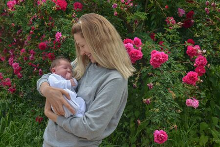Young mother with a newborn child in the park near the bush with roses 版權商用圖片