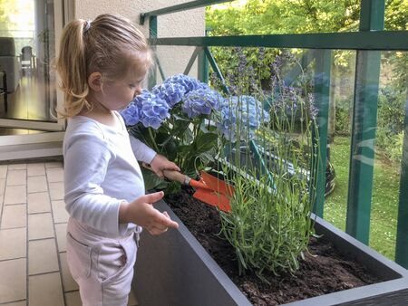 Girl of 3 years old plant flowers on the balcony 版權商用圖片
