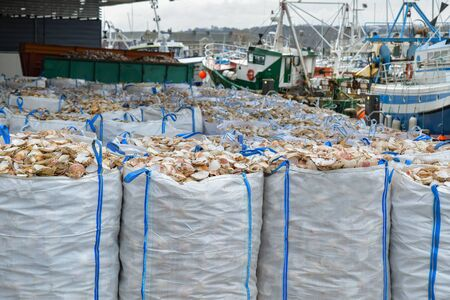 Bags with empty scallop shell for processing and boats for catching scallops