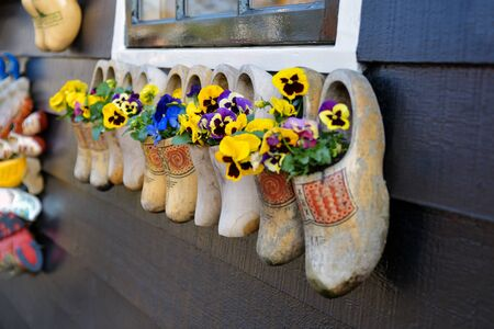 Dutch wooden clogs with flowers inside