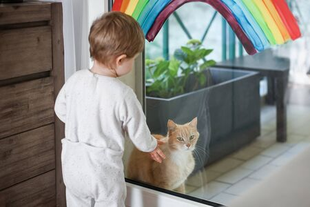 A red cat sits on the balcony during quarantine and the child wants to play with him. Rainbow on a window.