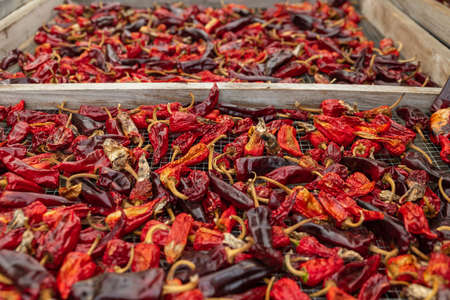 Espelette peppers drying on wooden dryer