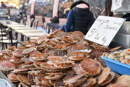 Fresh french scallops on a seafood market at Dieppe France