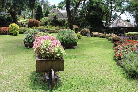 planters begonias en nicas jardn jardineras cajas de jardn