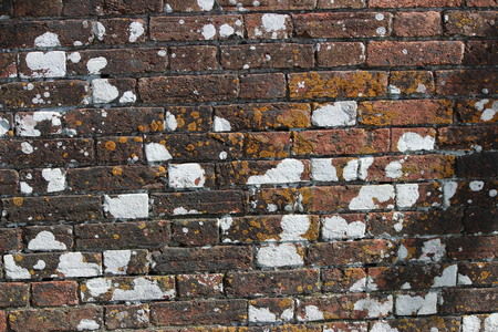 red wall: Red brick aged wall