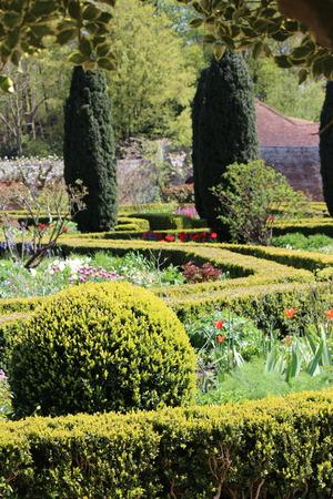 structured: Structured garden