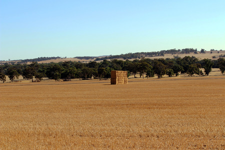 bails: Australian Rural Outback Farm. Bales of Hale Stock Photo