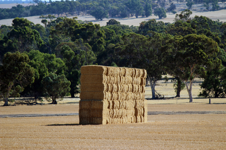 Australian Rural Outback Farm. Bales of Hale Stock Photo