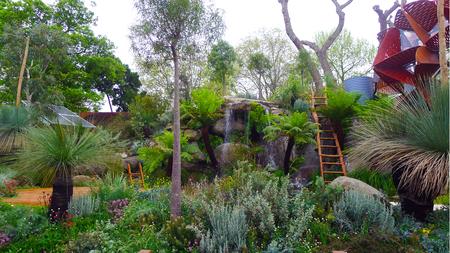 garden features: Australian Garden Design - Aussie Garden Natives