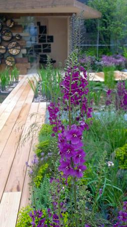 design: Landscape Design Garden Design
