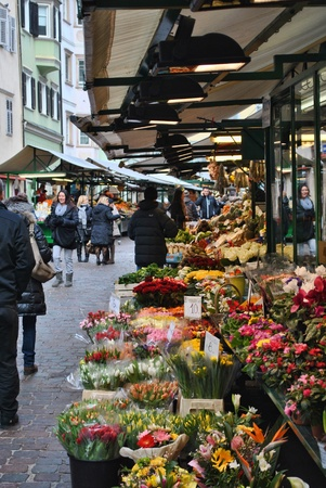 flower shop: flower stand in marketplace of bolzano Editorial