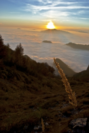 landscape at sunset in grigna during autumn photo