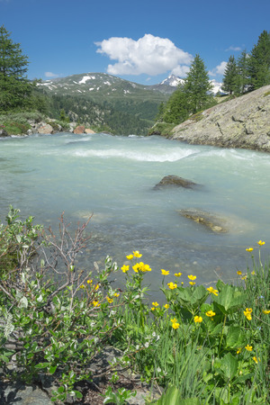 rutor creek in aosta valley Stock Photo