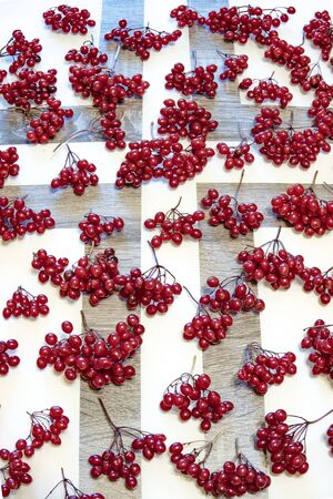 On the table are bunches of red berries of viburnum.