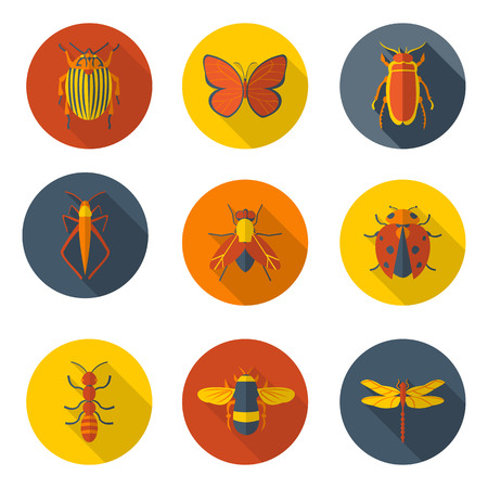 insects flat icons