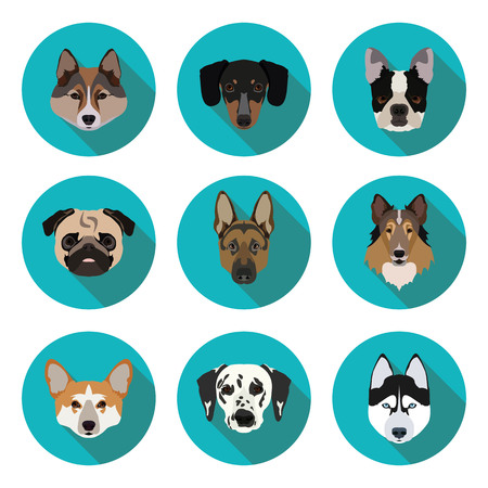 husky puppy: flat icons of dogs in vector format