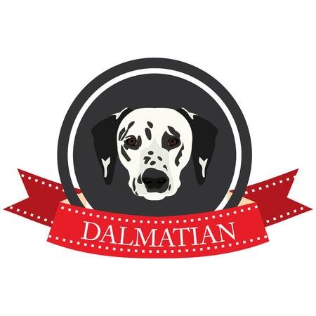 dog ears: flat icon Dalmatian in vector format