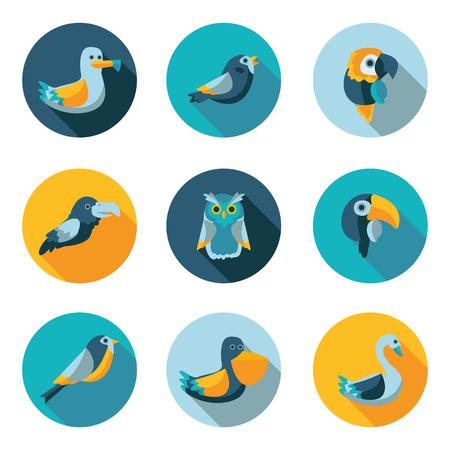 pigeon owl: birds best flat icons in vector format