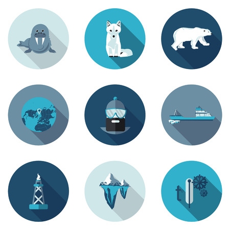 polar bear: best flat icons Arctic in vector format
