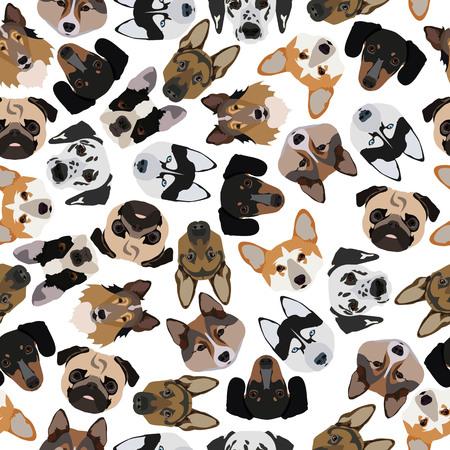 pedigree: flat seamless pattern pedigree dogs in vector format eps10